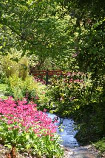Batsford Arboretum, Bourton-on-the-Water