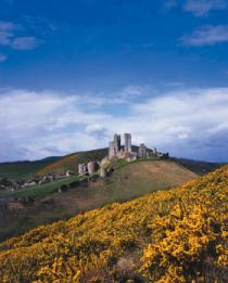 Corfe Castle<br>NATIONAL TRUST, Purbeck
