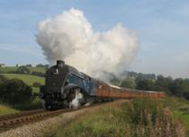North Yorkshire Moors Railway, Pickering