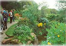 A Tour of Trossachs Garden Tours